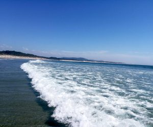 fotografia da Regina Surf House